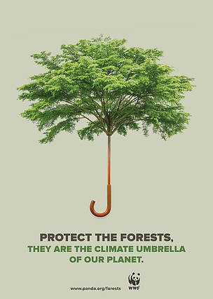 wwf_forests_and_climate_534702