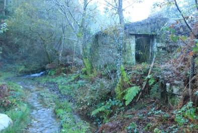 Muiño de Prillán, val fluvial do Lourido, Corcoesto.