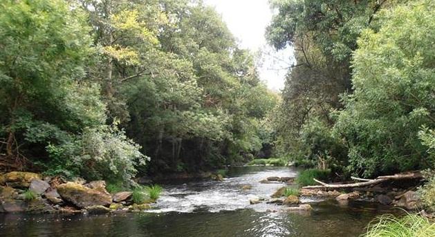 Restos da pesqueira do río Anllóns, Corcoesto..jpg