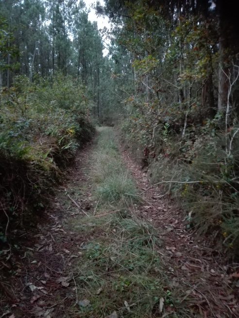 As vías culturais. O camiño real de Cortiño, parroquia de Corcoesto.