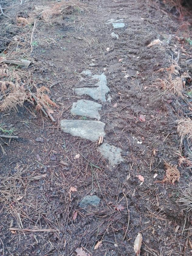 Restos das antigas labores mineiras, Corcoesto. Camiño de pedra.