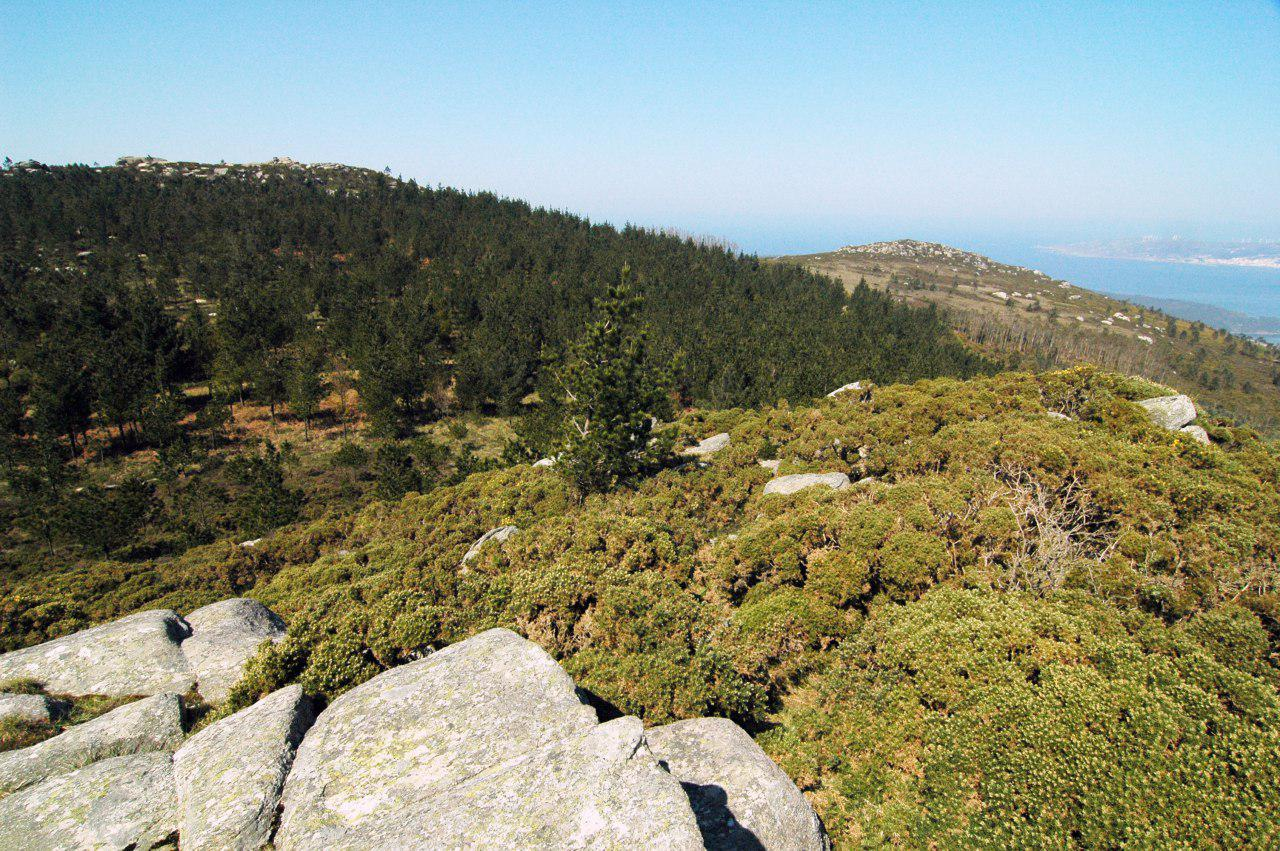 Serra do Gontón, afectada polo futuro parque eólico Mouriños, parroquia de Canduas
