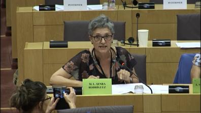 As eurodeputadas apoiaron a petición sobre as minas de San Fins, Lousame