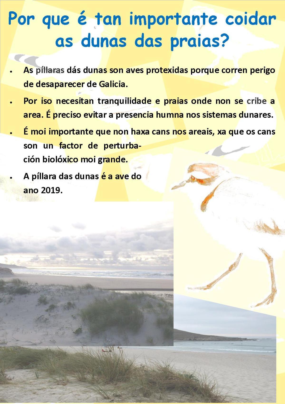 Publicación2.jpg