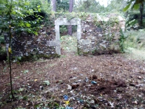 Limpeza do lixo no antigo cemiterio civil de Cortiño